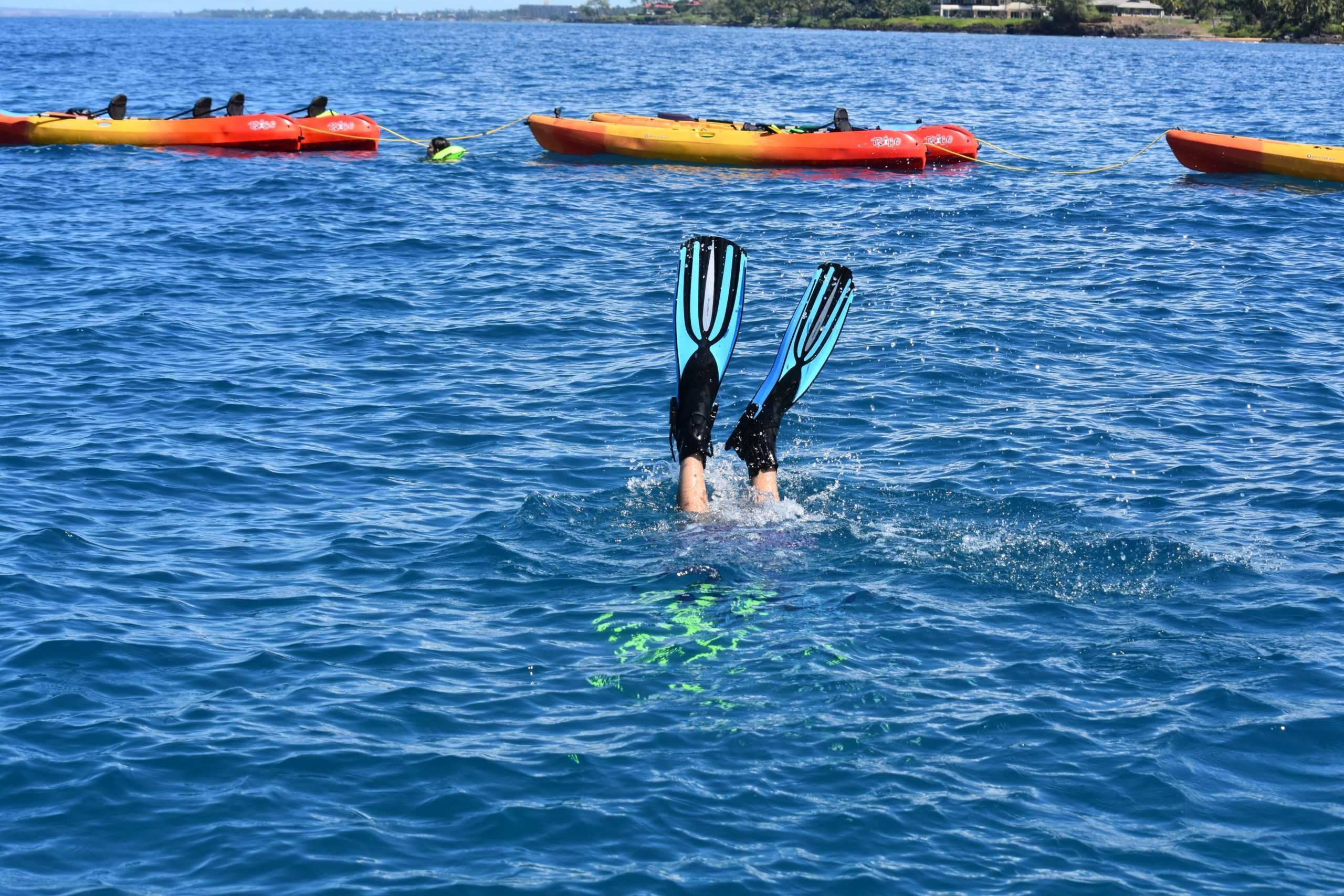 Snorkel Sets Booking Snorkel Gear Rentals