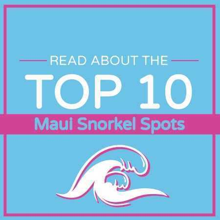Snorkel Sets Booking